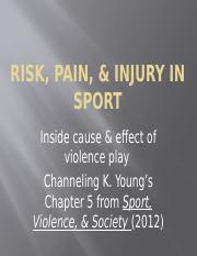 Risk, Pain & Injury in Sport