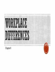 17. Workplace Differences (1).pptx