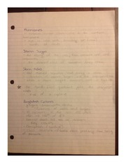 Hurricanes Study Notes