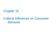16_Cultural_Influences_on_Consumer_Behavior_S1