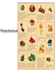 phytochemical supplement 2016.pptx