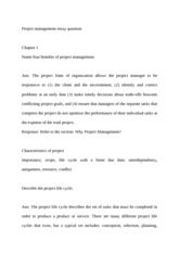 Project manager essay questions