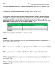 Mitosis Meiosis Assignment Worksheet E2011