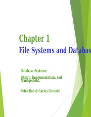 181_CSC 1400_IEN00585_15926_460_Lecture 1 & 2 File System and Database.ppt