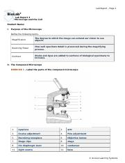Microscope_and_the_Cell_cv1.doc
