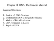 Chapter 14  DNA The Genetic Material 2011