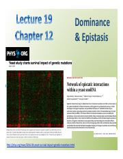Lect Dominance Epistasis preview.pdf
