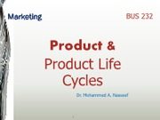 product_and_product_cycle.9712921