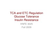 16 TCA and ETC Regulation Glucose tolerance and Insulin Resistance-1