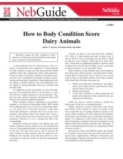 How to Body Condition Score Dairy Cows-2