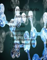 Lecture 2 - Sugars and polysaccharides review  _ role of ATP - stu.pptx