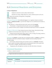 2 4 Chemical Reactions And Enzymes Docx Name Class Date 2 4 Chemical Reactions And Enzymes Lesson Objectives Explain How Chemical Reactions Affect Course Hero