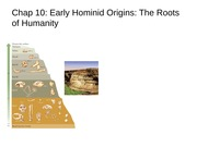 Ch 10 - Early Hominid Origins-The Roots of Humanity