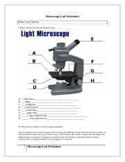 Microscope Lab Worksheet.docx