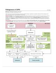 path COPD1.png