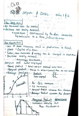 Output Notes