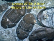 Lecture 27-28_History_of_Life_NOTES
