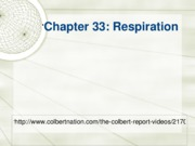 Chapter 33-Respiration