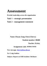 Assessment task 1   BSBMGT605B Provide leadership across the organisation
