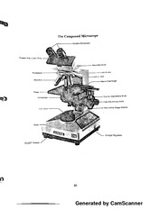 Compound Microscope notes