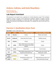 Anions_Cations_and_Ionic_Reactions_Lab_Assistant2.doc
