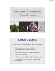 26_Plant+Growth+and+Development_3note