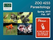 ZOO4233_Feb_19_Parasitic_Protozoa_I