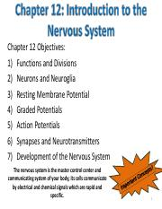 Chapter 12- Intro to Nervous System