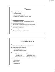 Bio 3 Lecture 7 Notes_Tissues and Organs.pdf