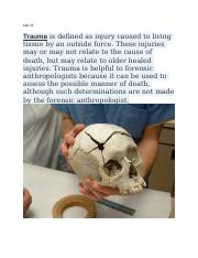 Forensic Anthropology Unit 3 Labs.docx
