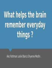 What helps the brain remember everyday things