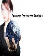 3 Business Ecosystem(1)