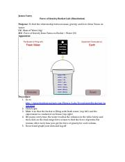 Force of Gravity Bucket Lab (Simulated) Report.docx