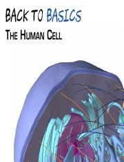 The_Human_Cell_120114.pdf