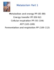 BB_LECTURE-12_Metabolism_Chemical Bond Energy and Glycolysis.ppt