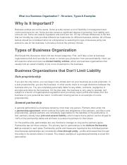 What Is a Business Organization-Structure,Types&Examples.docx