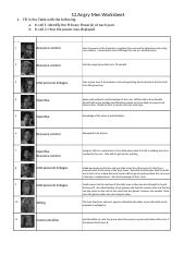 12 Angry Men Worksheet - 12 Angry Men Worksheet 1 Fill in the Table ...