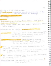 Energy Expenditure Notes