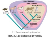21 Taxonomy and systematics