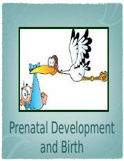 Developmental Psych Week 3.pptx