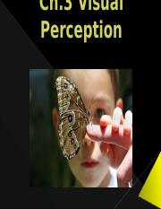 Ch.3 Visual Perception(1).pptx
