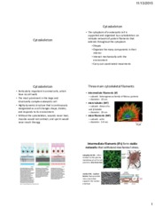 Lecture 21 and 22 Cytoskeleton.pdf