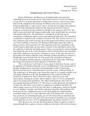 Contemporary Social Theory - Enlightenment and Critical Theory Essay