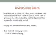 Cocoa_Processing_Technology_Day_2