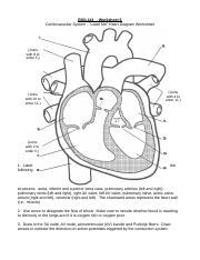 Worksheet_6_-_Label-Me-Heart_Diagram - BIOL141 Worksheet 6 ...