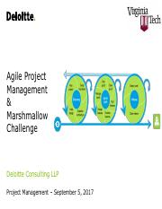 VT_BIT_4484_Agile_Project_Management.pdf