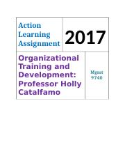 2017 Action Learning Training Plan.doc