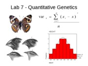 DeNegre Lab 7_quantitative