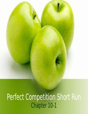 perfectcompetition ex 1