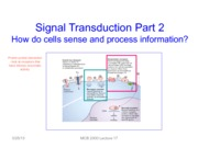 Lecture 17 Signal Transduction-Insulin-BW